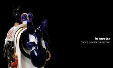Cavalli da soma