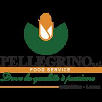 Pellegrino srl logo 1